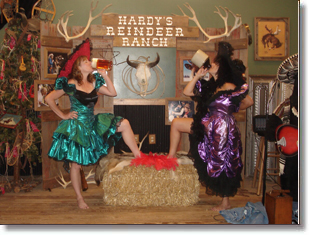 Hardy S Reindeer Ranch Central Illinois Most Unique