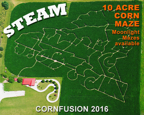Steam maze for 2016